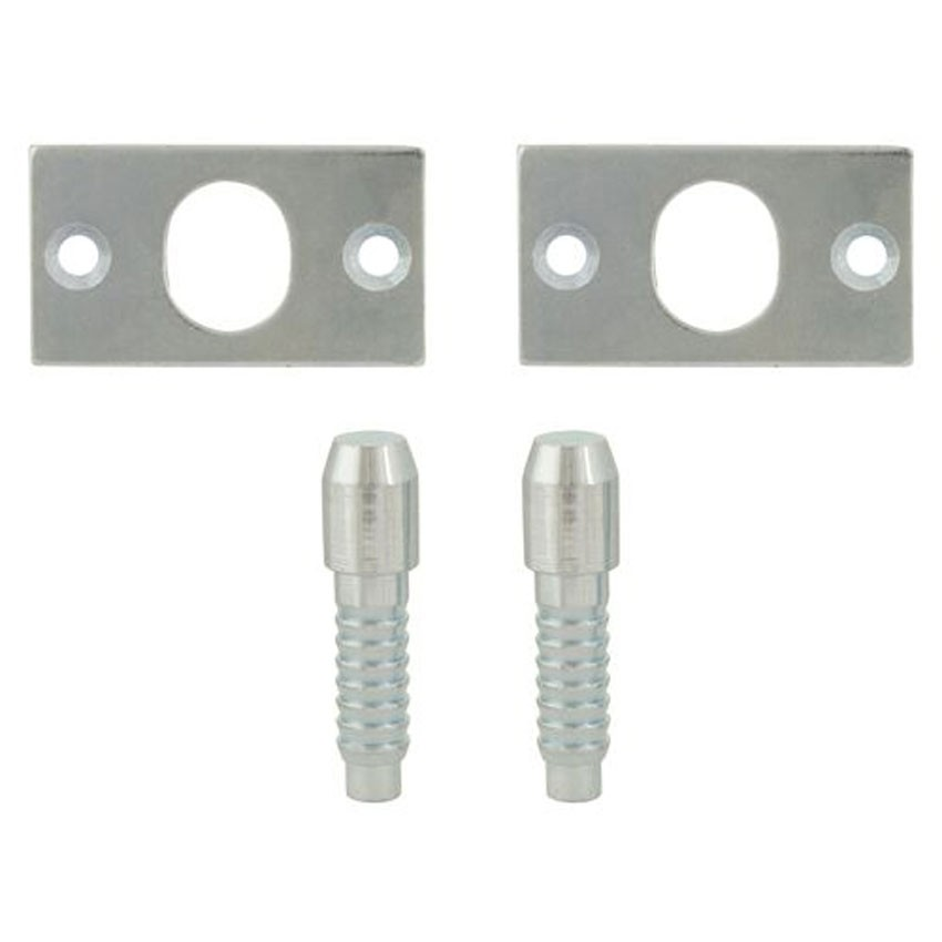 TSS Security Hinge Bolts Pair Zinc